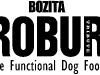 2009-bozita_robur_logo_black