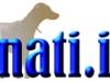 snati-logo-2011-200